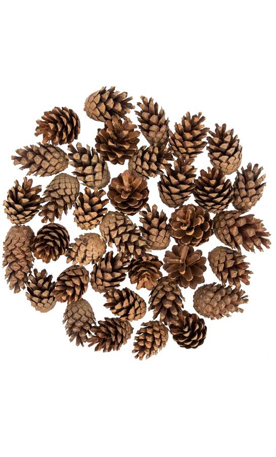 Pine cones FairyCones 36 pcs