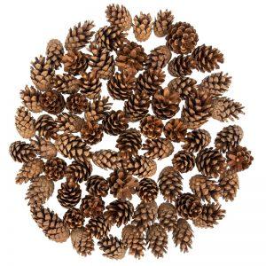 Pine cones FairyCones 72 pcs